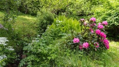 Chalet Fiz garden